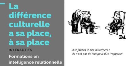 Différence culturelle, magazine d'Interactifs